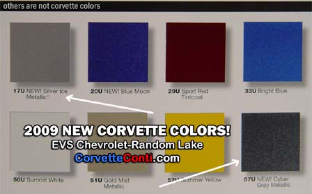 New 2009 Corvette Paint Chips