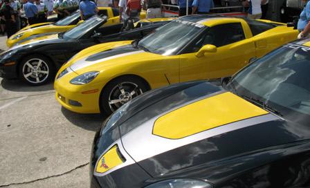 2009 GT1 Championship Edition Corvette