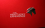 NCM to Raffle Special One-Off Kentucky Experience Corvette Grand Sport