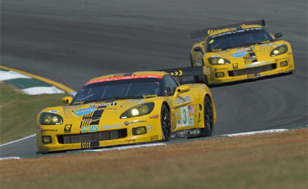The Corvette C6.Rs at Petit Le Mans