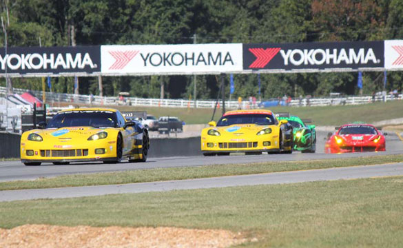 [PICS] 2011 Petit Le Mans Corvette Racing Photo Gallery