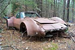 Barn Find: Flared C3 Corvette Put Out to Pasture