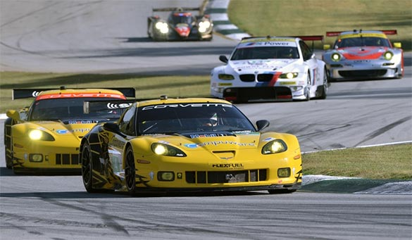 Corvettes Qualify Fourth and Fifth for ALMS Season Finale