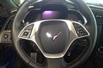 The Reveal of the 2014 Corvette Stingray Premiere Edition at the Corvette Museum