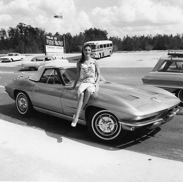 [PIC] Throwback Thursday: 1963 Corvette Sting Ray at Weeki Wachee, Florida - Corvette: Sales ...