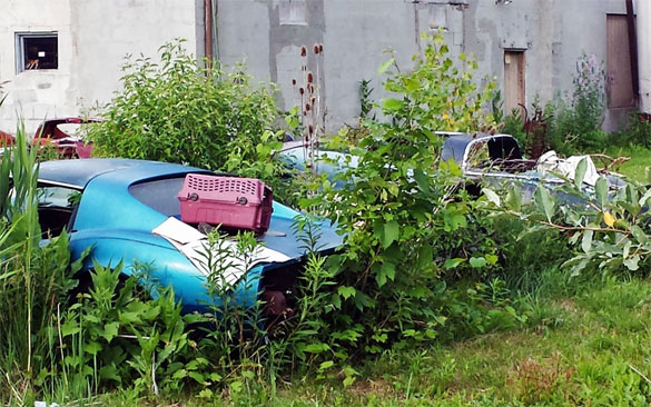Long Forgotten Corvettes Left to Die in Upstate New York