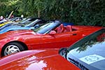 The 2014 Corvettes on Woodward Food Drive