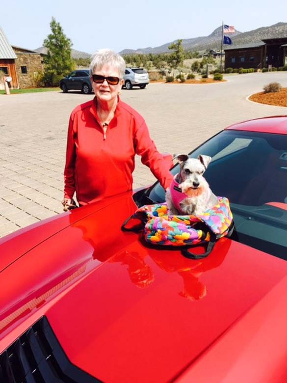 Vettes and Pets!
