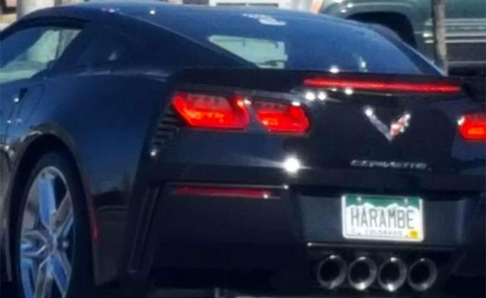 [PICS] Sad Observation about a Corvette Vanity Plate