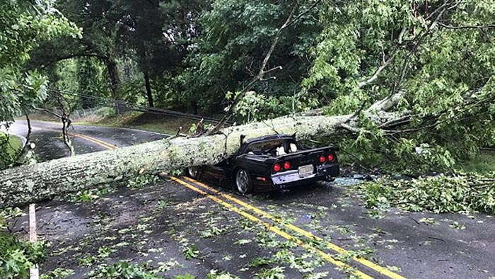 [ACCIDENT] Corvette Driver Injured after a Tree Falls on His C4 Corvette
