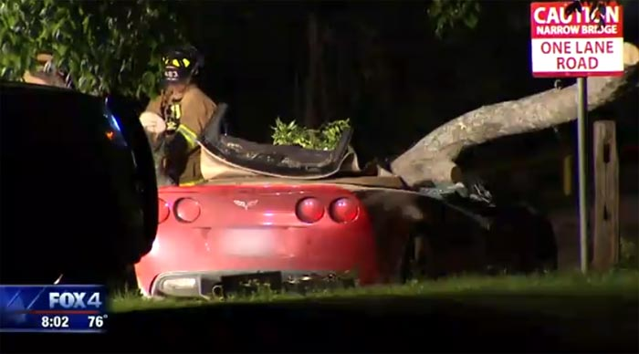 Texas Corvette Driver is Killed After Tree Falls on Car