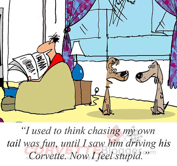 Saturday Morning Corvette Comic: Chasing Tails