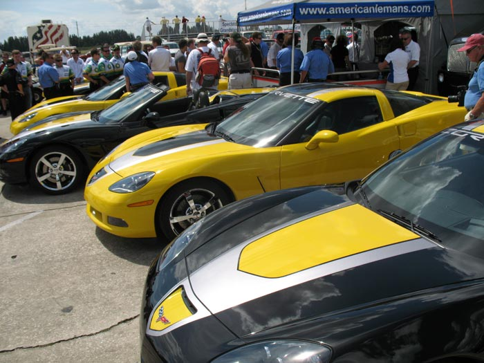 2009 Corvette GT1 Championship Editions at Sebring