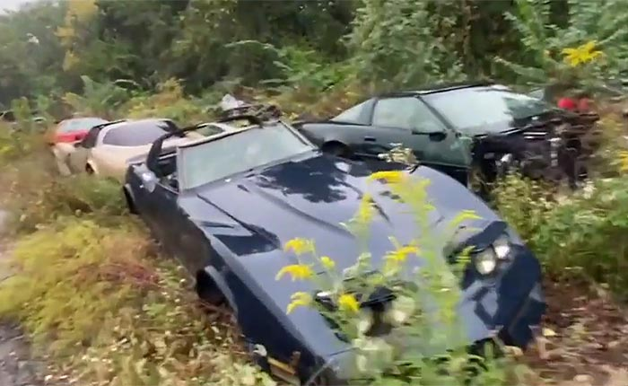 [VIDEO] Corvette Salvage Yard Helps Wrecked Corvettes Find New Life