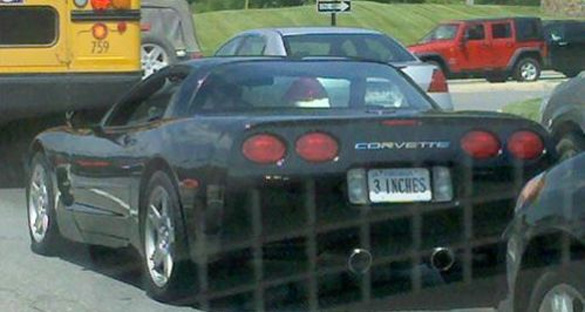 Corvette Stereotype Reinforced with Custom License Plate