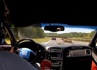 [CRASH] Deer vs Corvette Z06 at HyperFest 2012