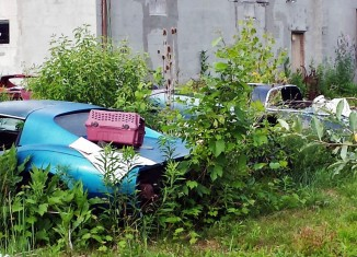 Forgotten Corvettes Left to Die in Upstate New York