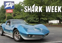 Shark Week at Zip Corvette Parts