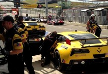 [PIC] Corvette Racing Honoring Two Fallen Racers This Weekend at COTA