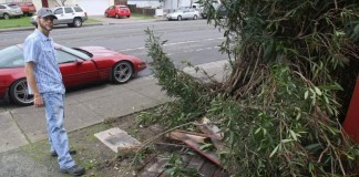 Controversy After Owner Apprehends DUI Driver Who Crashed into His C4 Corvette
