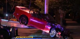[VIDEO] Police Chase Leads to Crash and Jail for Corvette Driver