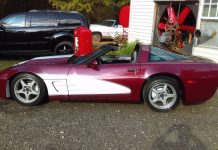 "Corvettes on eBay: 1987 ""50th Anniversary Edition"" Corvette"