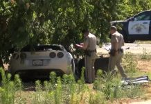 Man Driving Stolen Corvette Charged In Fatal Crash with SUV