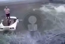 [ACCIDENT] A C6 Corvette Crashing Into a Mexican Canal is as Bad as it Sounds