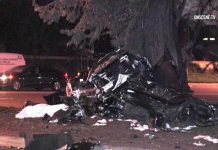 [ACCIDENT] Driver of Suspected Stolen Corvette Killed in Crash