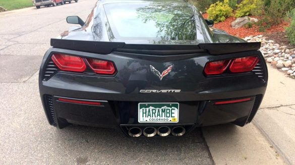 Man with Harambe Vanity Plate on a Corvette Wants to Explain Why
