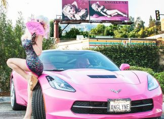 New Limited Run Series Will Tell Story of LA Billboard Queen Angelyne