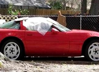 Florida Man Sets Neighbor's Red Corvette On Fire As Revenge for Suspected Theft of His Lawnmower
