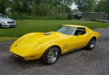 [STOLEN] Illinois Car Thieves Chop Down a Tree To Steal a Yellow 1974 Corvette